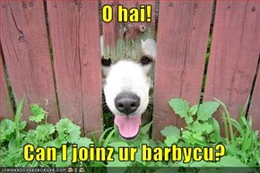 O hai!  Can I joinz ur barbycu?
