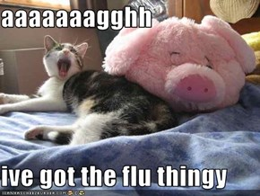 aaaaaaagghh  ive got the flu thingy