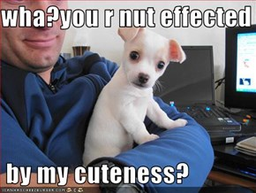 wha?you r nut effected   by my cuteness?