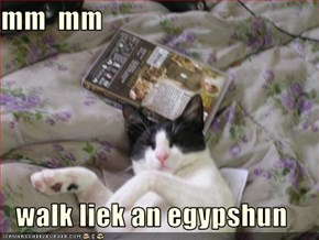 mm  mm   walk liek an egypshun