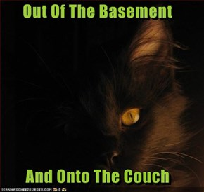 Out Of The Basement  And Onto The Couch