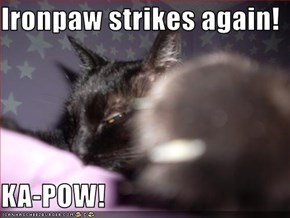 Ironpaw strikes again!  KA-POW!