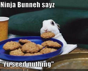 "Ninja Bunneh sayz  ""Yu seed nuthing"""