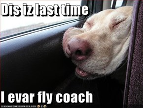 Dis iz last time  I evar fly coach