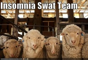 Insomnia Swat Team