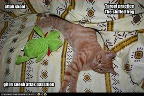 Target practice The stuffed frog