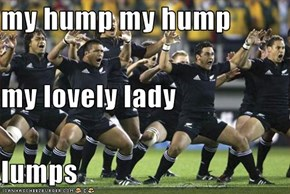 my hump my hump  my lovely lady lumps