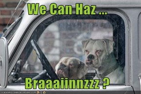 We Can Haz ...  Braaaiinnzzz ?