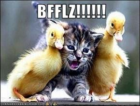 BFFLZ!!!!!!