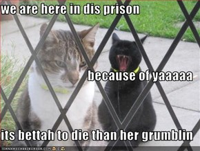 we are here in dis prison    because of yaaaaa its bettah to die than her grumblin