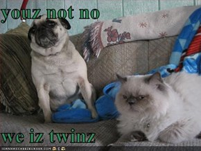youz not no  we iz twinz