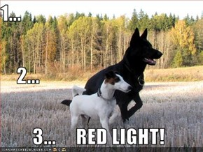 1...     2...         3...     RED LIGHT!