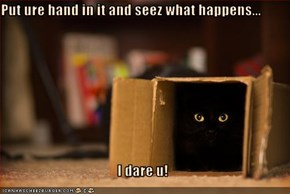 Put ure hand in it and seez what happens...  I dare u!