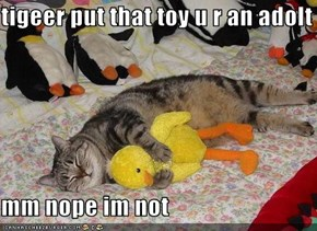 tigeer put that toy u r an adolt  mm nope im not