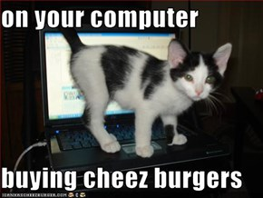 on your computer  buying cheez burgers