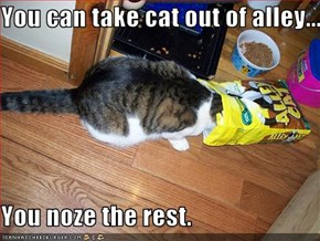 You can take cat out of alley...  You noze the rest.