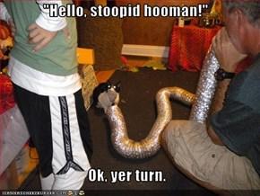 """""""Hello, stoopid hooman!""""  Ok, yer turn."""