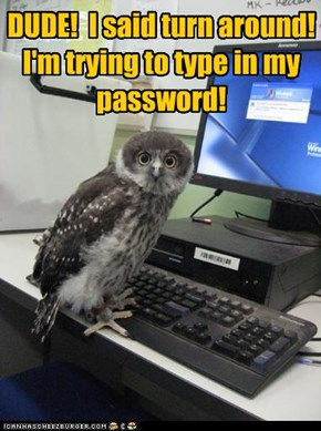 DUDE!  I said turn around! I'm trying to type in my password!