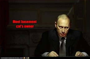 Meet basement  cat's owner
