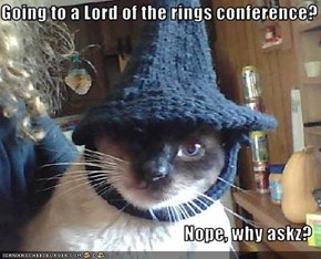 Going to a Lord of the rings conference?  Nope, why askz?