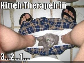 Kitteh Therapeh in  3...2...1....