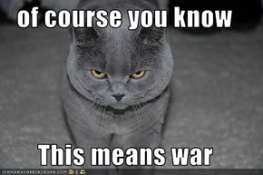 of course you know  This means war