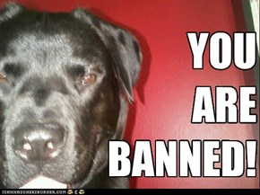 YOU ARE BANNED!