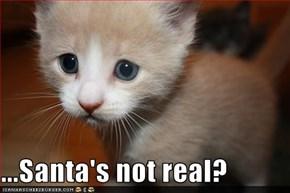 ...Santa's not real?