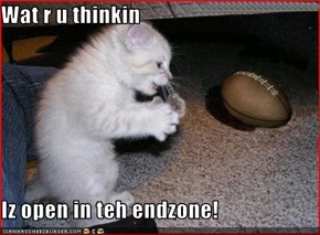 Wat r u thinkin  Iz open in teh endzone!