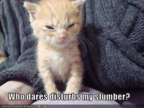 Who dares disturbs my slumber?