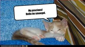 My precious!    Hello im smeegal.