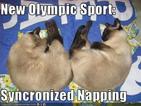 New Olympic Sport:  Syncronized Napping