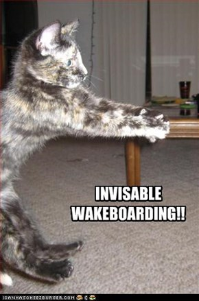 IVISABLE WAKERBOARDING