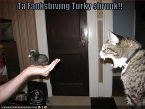 Ta Fanksbiving Turky shrunk!!