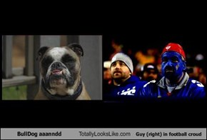BullDog aaanndd Totally Looks Like Guy (right) in football croud