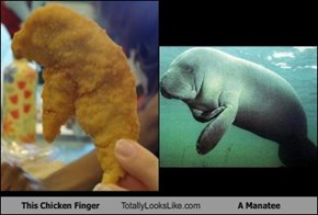 This Chicken Finger Totally Looks Like A Manatee