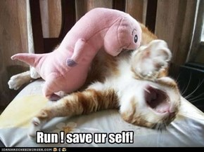Run! save ur self!