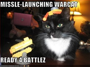 MISSLE-LAUNCHING WARCAT  READY 4 BATTLEZ