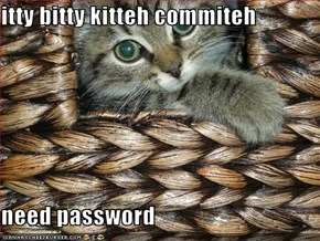 itty bitty kitteh commiteh   need password