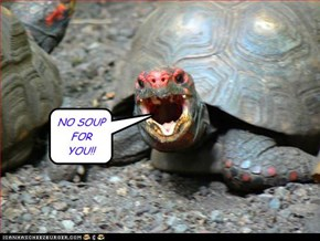 NO SOUP FOR YOU!!