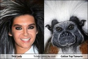 This Lady Totally Looks Like Cotton Top Tamarin