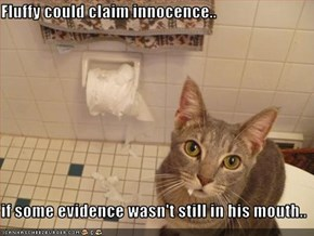 Fluffy could claim innocence..  if some evidence wasn't still in his mouth..