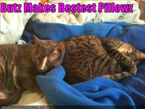Butz Makes Bestest Pillowz