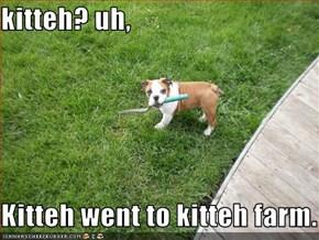 kitteh? uh,  Kitteh went to kitteh farm.