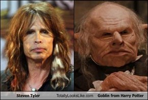 Steven Tyler Totally Looks Like Goblin from Harry Potter