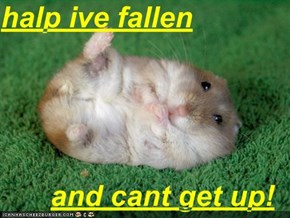 halp ive fallen  and cant get up!