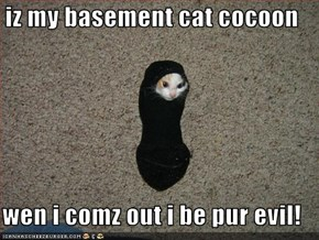 iz my basement cat cocoon  wen i comz out i be pur evil!