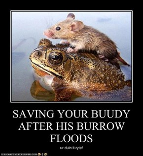 SAVING YOUR BUUDY AFTER HIS BURROW FLOODS