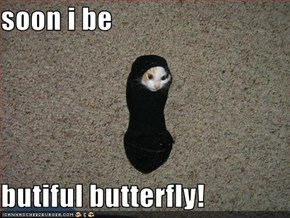 soon i be  butiful butterfly!