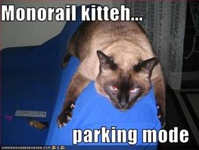 Monorail kitteh...  parking mode